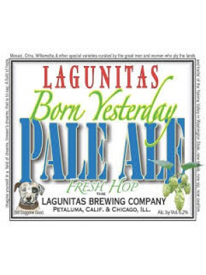 Lagunitas Born Yesterday 6pk