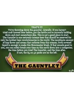 Iron Fist Brewing Co. The Gauntlet IPA 750ml